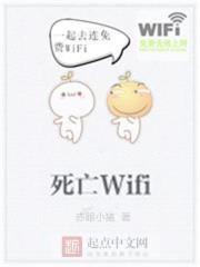 小说《死亡Wifi》