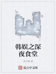 小说《韩娱之深夜食堂》