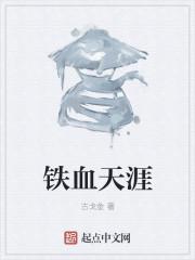 小说《铁血天涯》