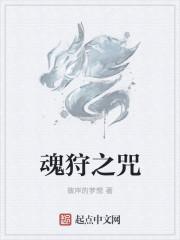 小说《魂狩之咒》