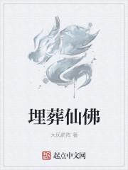 小说《埋葬仙佛》