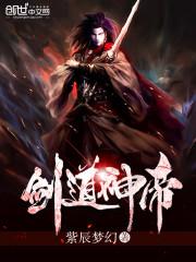 小说《剑道神帝》