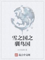 小说《雪之国之驯鸟国》