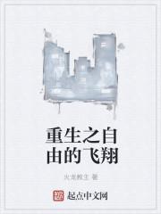 小说《重生之自由的飞翔》