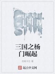 小说《三国之杨门崛起》