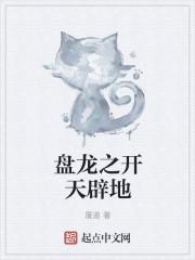 小说《盘龙之开天辟地》