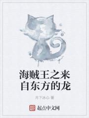 小说《海贼王之来自东方的龙》
