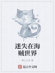 小说《迷失在海贼世界》