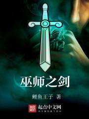 小说《巫师之剑》