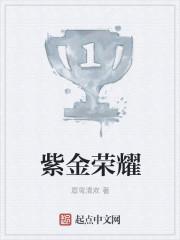 小说《紫金荣耀》